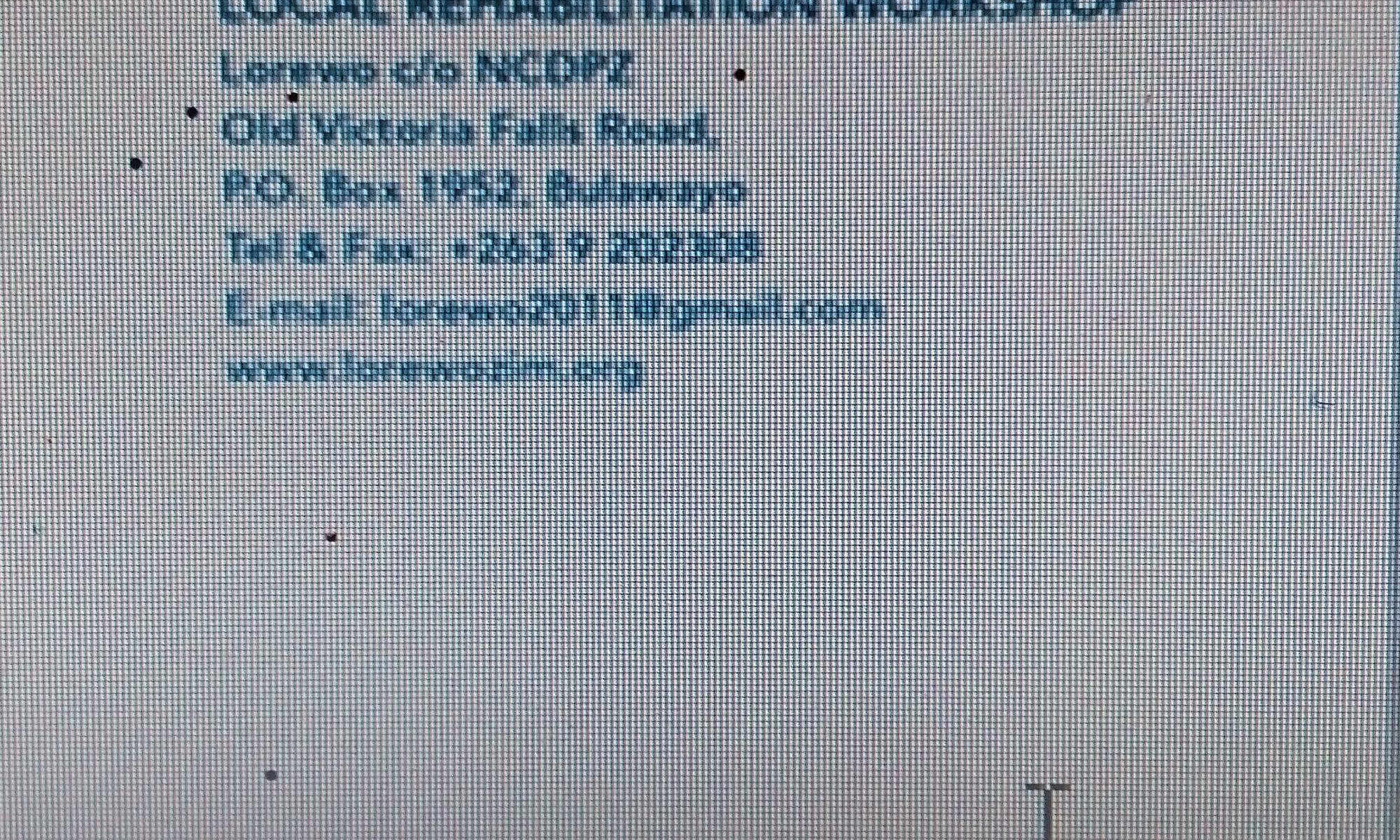 LOCAL REHABILITATION WORKSHOP (LOREWO)